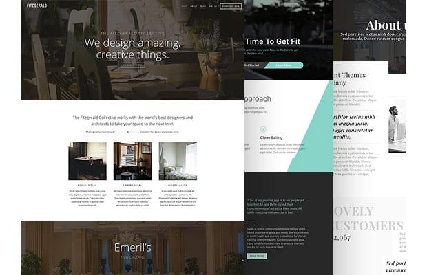 Divi website page builder for Wordpress website design