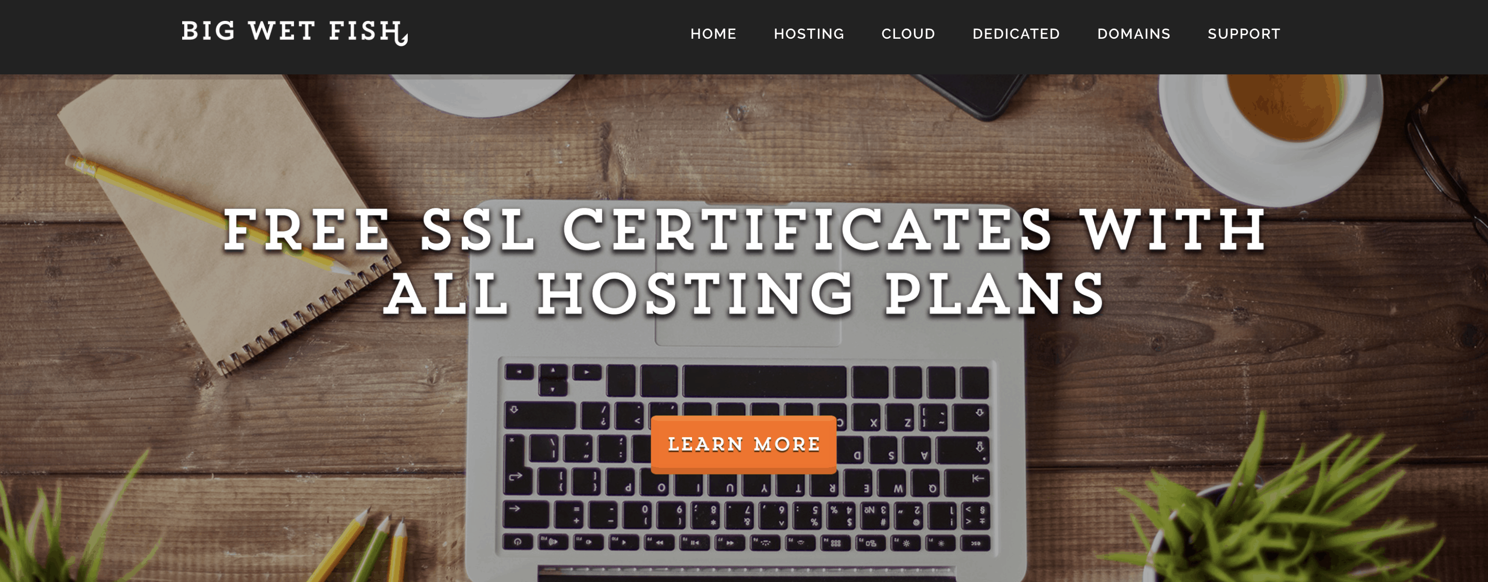 Website hosting by BigWetFish